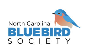 Bluebirds Over North Carolina @ Persnickety | High Point | North Carolina | United States
